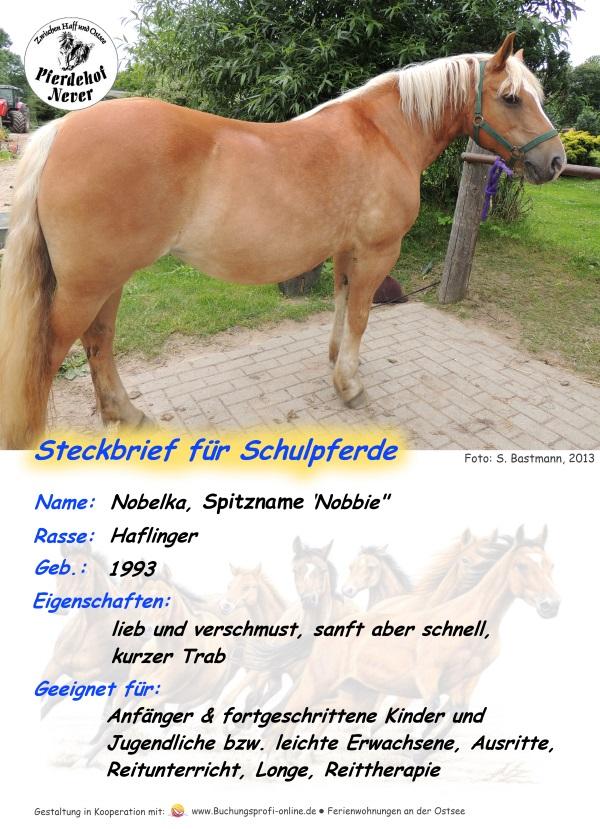 Steckbrief Nobbie