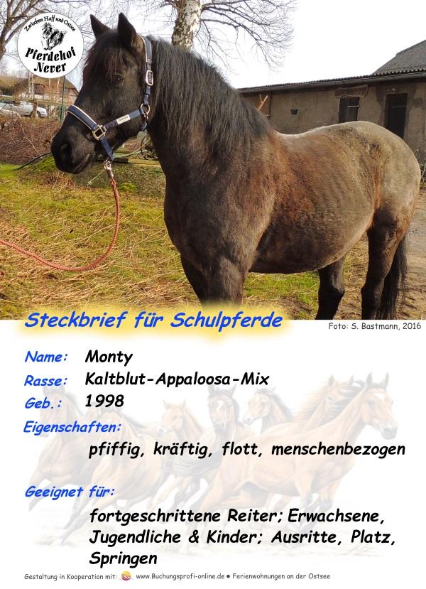 Steckbrief Monty